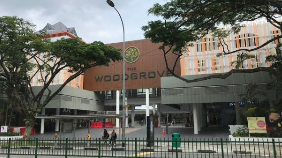 Primary and Secondary Tuition in Woodlands